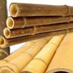 cara mengawetkan kayu glugu yang sangat simpel